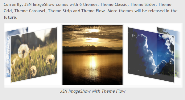 Sample of image gallery with Theme Flow and 3D effect